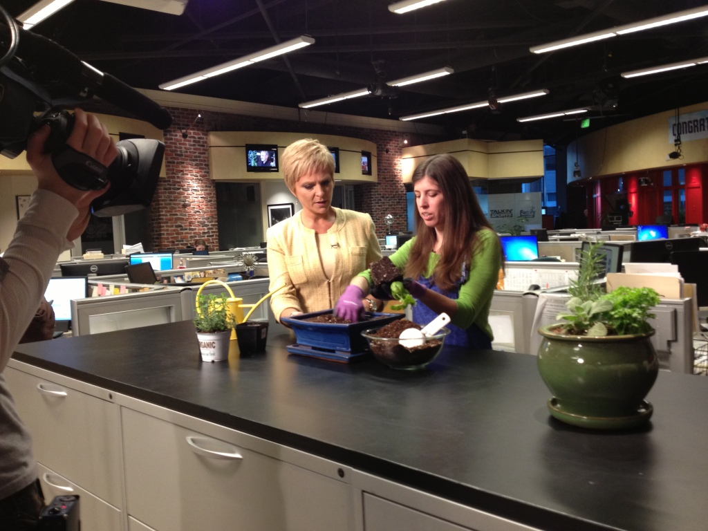 Bridget Stuchly with SLCGreen shows KUTV2's Mary Nickles how to plant an indoor herb garden.