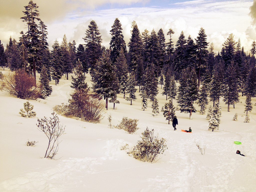 sledding_sotto_Flickr