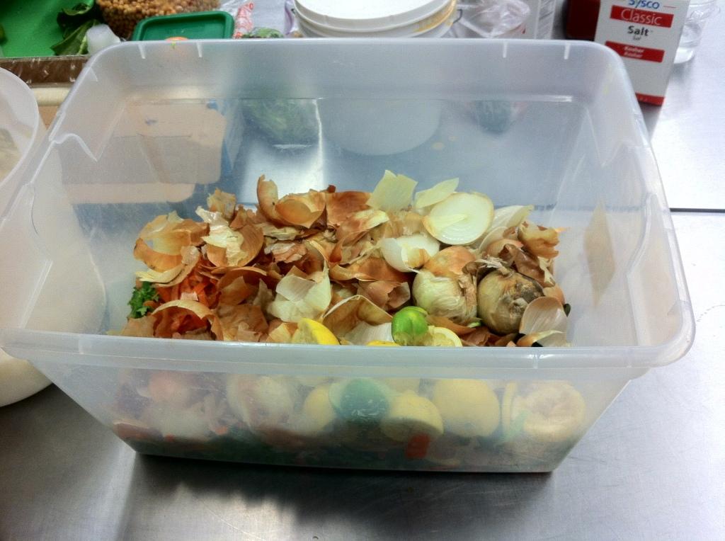 Temporary Food Waste Bin