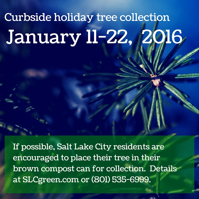 Holiday Tree Ad Option 2-2016