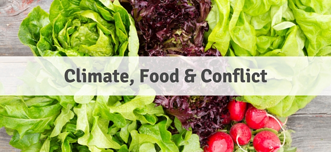 Climate, Food & Conflict Banner