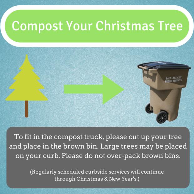 tree-compost-2