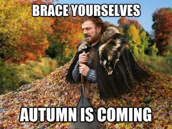 Leaf meme
