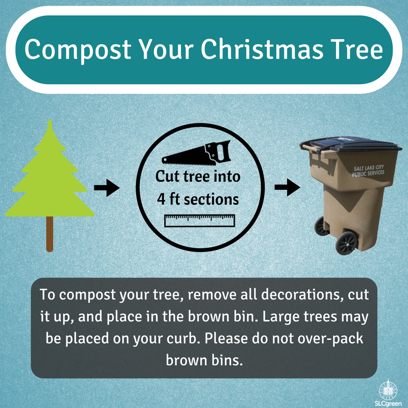 Tree Compost_2017