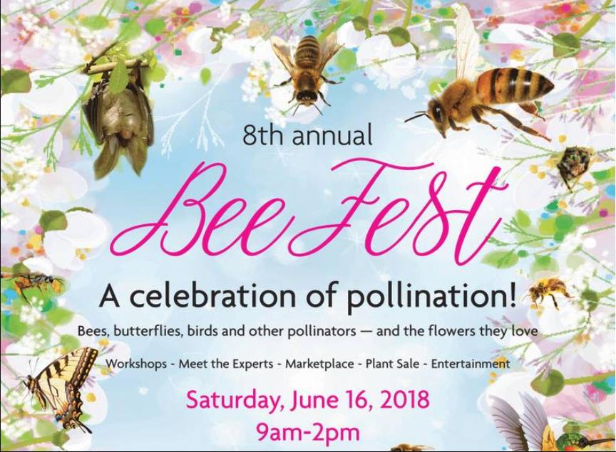 Bee Fest