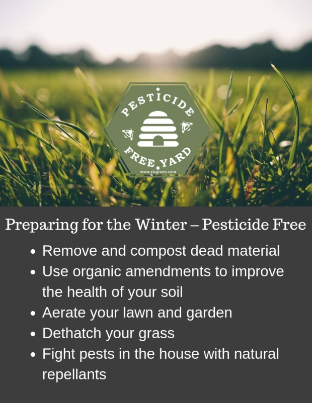 Preparing for the Winter – Pesticide Free