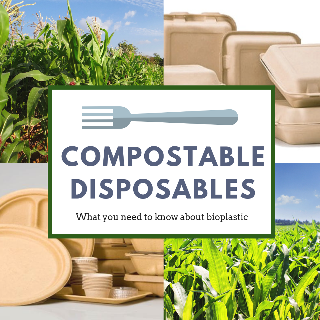 compostable disposables (1)